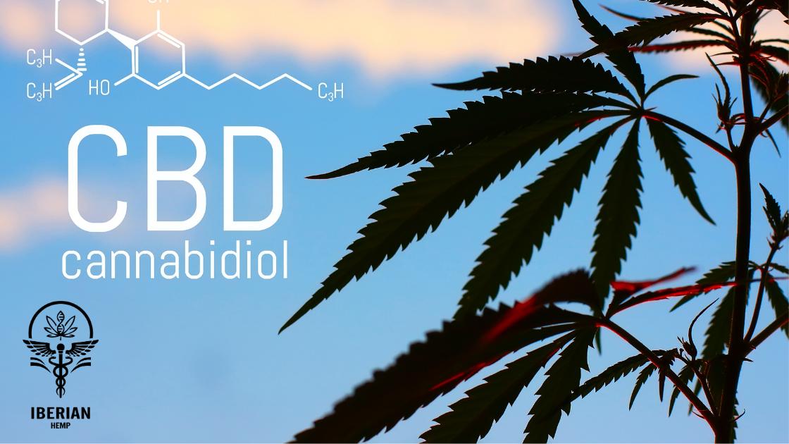 CBD y THC